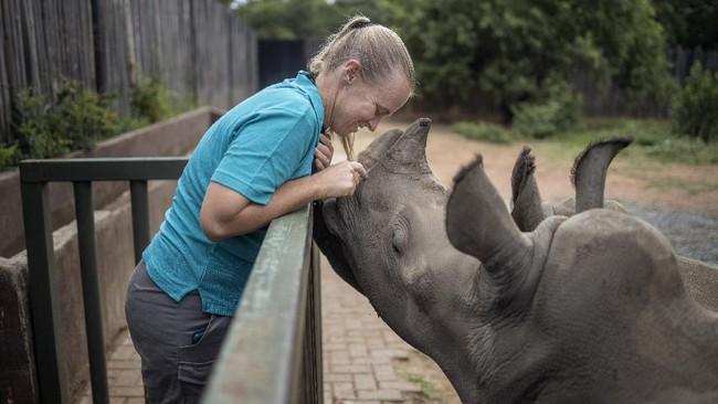 Lokasi The Rhino Orphanage dirahasiakan agar keberadaannya tak diketahui pemburu liar.