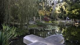 FOTO: Lotusland, Miniatur Taman Jepang di Sudut California