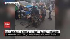 VIDEO: Diduga Kelelahan, Seekor Kuda Delman Terjatuh di Jalan