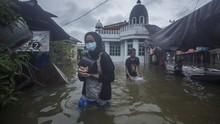 LAPAN: Populasi Hutan Turun 10 Tahun Terakhir, Kalsel Banjir