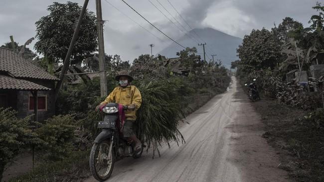 Foto Batuk Gunung Semeru Muntahkan Awan Panas Sejauh 4 5 Km