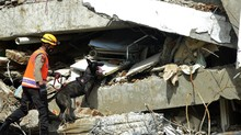 Gempa Sulut, Bangunan Rusak di Dua Kecamatan