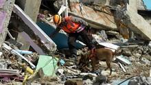 90 Meninggal Akibat Gempa Sulbar, Pencarian 3 Korban Disetop