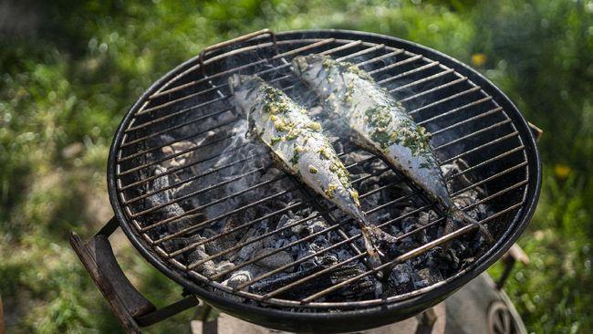 Memanggang atau membakar ikan tak semudah memanggang daging. Berikut cara memanggang ikan yang benar, nikmat, dan anti hancur.