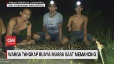 VIDEO: Warga Tangkap Buaya Muara saat Memancing