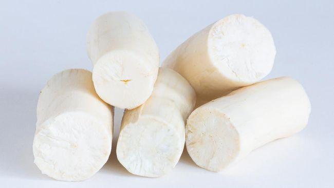 Selain beras, ada singkong yang juga bisa dijadikan sumber karbohidrat. Berikut beberapa manfaat makan singkong.