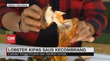 VIDEO: Lobster Kipas Saus Kecombrang