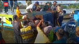 VIDEO: Tinggal Mengungsi, Buaya di Kalsel Dievakuasi Petugas