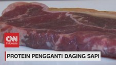 VIDEO: Protein Pengganti Daging Sapi