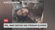 VIDEO: Viral, Nenek Sebatang Kara Ditemukan Kelaparan