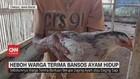 VIDEO: Heboh Warga Terima Bansos Ayam Hidup