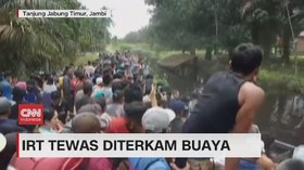 VIDEO: IRT Tewas Diterkam Buaya