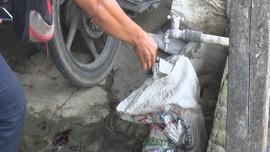 VIDEO: Polisi Geledah Tempat Pemotongan Kucing di Medan
