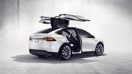 Saham Tesla Melompat 5 Persen, Padahal Urung Rakit SUV X