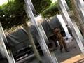 VIDEO: Suu Kyi Ditahan, Militer Kuasai Balai Kota Yangon