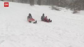 VIDEO: Badai Salju Ubah Central Park Jadi Arena Ski