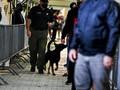FOTO: AS Gunakan Anjing Pelacak untuk Deteksi Corona