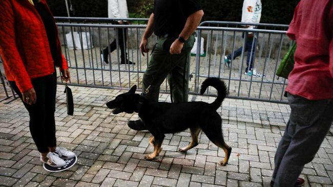 Jasa anjing telah digunakan untuk mendeteksi Covid-19 di bandara Dubai.