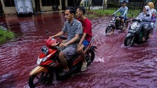 Banjir Air Merah Pekalongan, Kades Sebut dari Pewarna Batik
