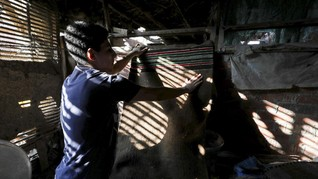 FOTO: Menjaga Kearifan Lokal Mesir Lewat Permadani