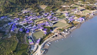 Main ke Desa Berwarna Ungu di 'Pulau Borahae' Korea Selatan