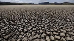 FOTO: Kemarau dan Deforestasi, Laguna di Kolombia Mengering