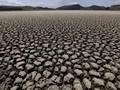 Pemerintah Rogoh Rp112 T untuk Antisipasi Perubahan Iklim