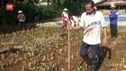 VIDEO: Dapat 24 M, Petani Miliarder Ini Masih Bertani