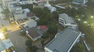 Ruang Terbuka Hijau Bakal Dioptimalkan Tanggulangi Banjir DKI