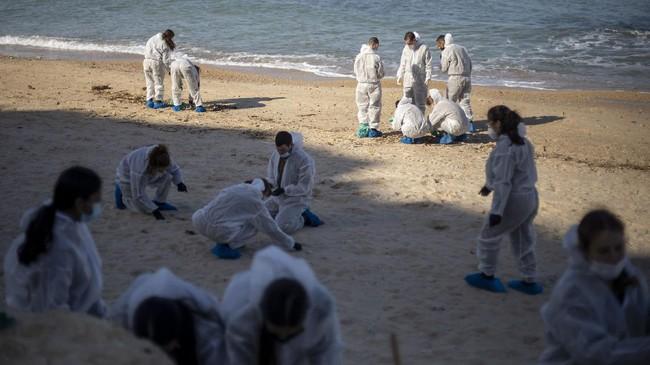 Puluhan ton minyak tumpah di laut Mediterania Israel, pekan lalu. Pemerintah setempat akhirnya menutup garis pantai untuk menyelidiki asal muasal minyak.