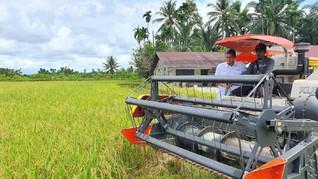 Tambah Cadangan, Bulog Mulai Serap Beras dari Provinsi Aceh