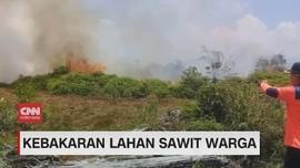 VIDEO: Kebakaran Lahan Sawit Warga