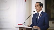 Daftar Lengkap 17 Duta Besar RI yang Baru Dilantik Jokowi