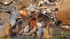 VIDEO: Pemakaman Longsor, Ratusan Peti Mati Berserakan