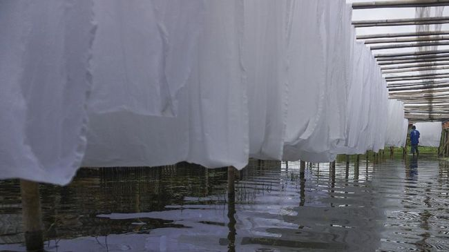 Kepala BPBD Kota Kupang menyatakan tak mampu menangani bencana banjir dan tanah longsor yang terjadi sejak Sabtu (3/4). Korban terus ada, tapi bantuan tidak ada