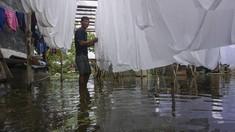FOTO: Banjir Pekalongan Ganggu Produktivitas Perajin Batik