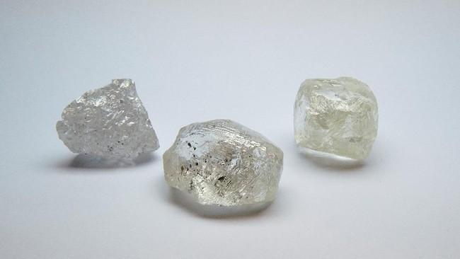 Alrosa, produsen berlian asal Rusia, akan melelang salah satu berlian berukuran besar 242 karat dalam abad ini.