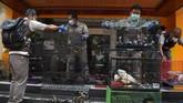 Penyelundupan ratusan satwa ilegal mulai dari Kakatua Jambul Putih, Nuri Tanimbar, Jalak Rio-rio, Merpati Hitam Sulawesi, dan Kura-kura berhasil digagalkan.