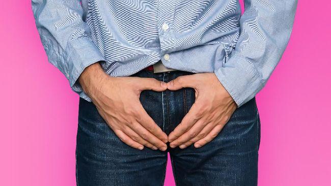 Pria dan wanita memiliki sistem reproduksi yang berbeda. Berikut pengertian, organ, dan fungsi sistem reproduksi pria.
