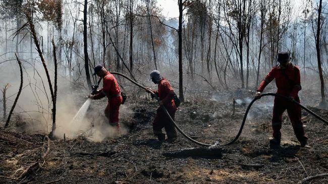 Sebanyak sembilan titik panas di Riau disebut terdeteksi di lahan konsesi HTI dan enam lainnya terdapat di lahan HGU.