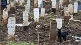 Lahan makam untuk pasien covid-19 DKI Jakarta di Bambu Apus, Jakarta Timur, penuh seiring lonjakan angka kematian pasien di ibu kota.