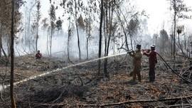 BNPB: Tunggakan Pembayaran Bencana Karhutla Rp1,3 T