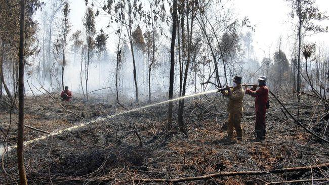 BNPB mengaku masih memiliki tunggakan pembayaran penanganan kebakaran hutan dan lahan (karhutla) kepada swasta sebesar Rp1,3 triliun per 2020.