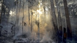 Wagub Riau Sebut Karhutla Jadi Pengalih Isu Peredaran Narkoba