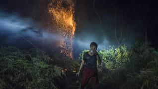 FOTO: Kebakaran Hutan Riau Meluas