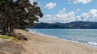 Fakta 3 Gempa Selandia Baru yang Berujung Peringatan Tsunami