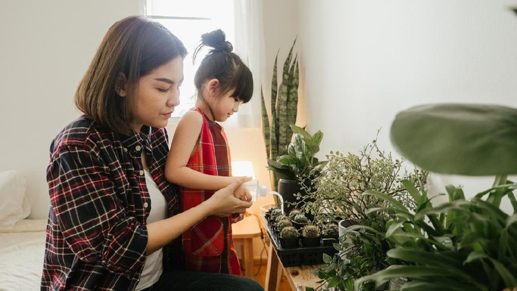 Happy little girl with mother smiling and having fun holding pot with planted cactus near window sill at home.