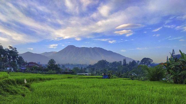 Bertambah lagi wisata alam di Bogor, kali ini berupa persawahan dengan pemandangan Gunung Gede dan Gunung Salak.