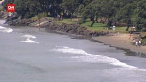 VIDEO: Laut Selandia Baru Tenang, Vanuatu Gelombang Tinggi