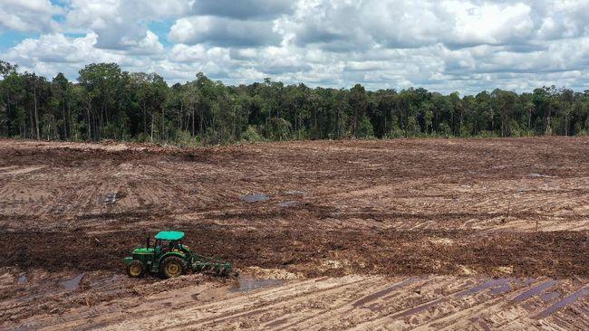 Bappenas memperbarui rencana induk (master plan) pengembangan lokasi lumbung pangan (food estate) di Kalimantan Tengah.